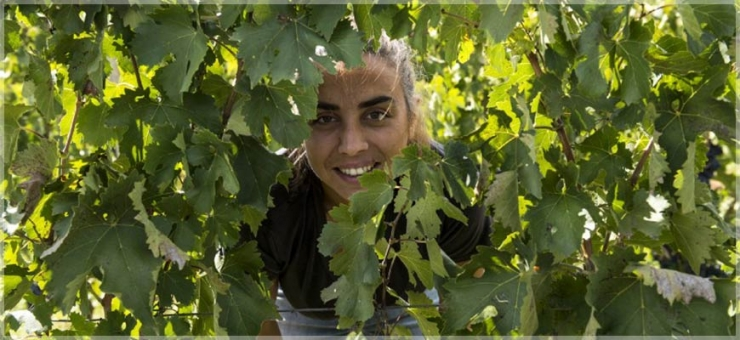A NATURAL WOMAN IN WINEMAKING: ARIANNA OCCHIPINTI